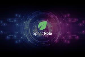 spring-role
